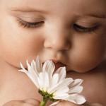 Фото Новорожденного Младенца